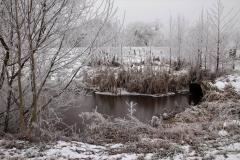 winter17jan2017 18